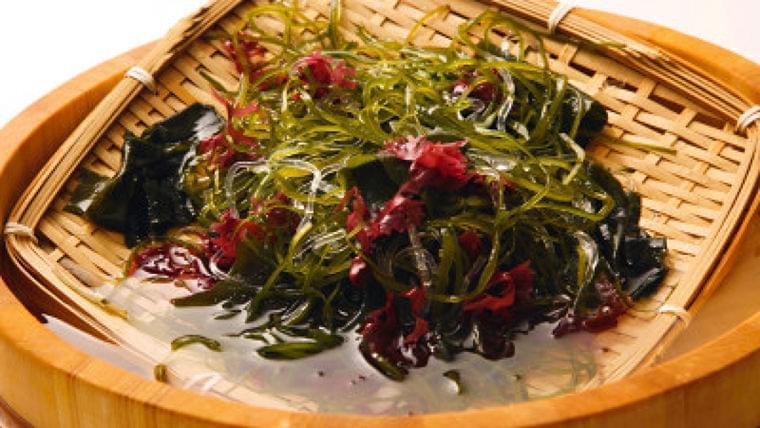「海藻は髪に良い!」 これ本当? | Mocosuku(もこすく)