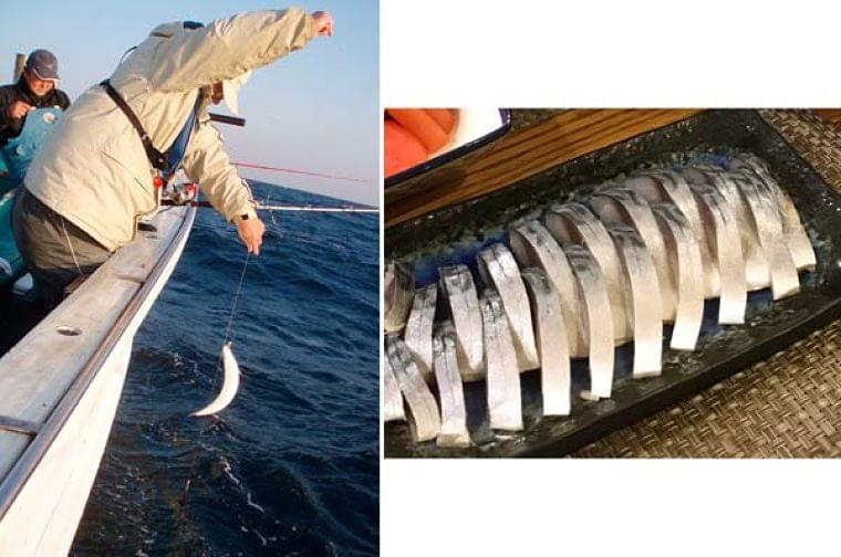 「新鮮」に落とし穴…旬の魚に潜む寄生虫と食中毒への対処|日刊ゲンダイヘルスケア