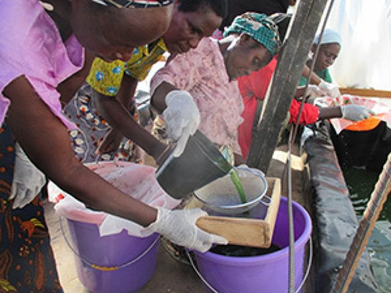 アフリカの慢性栄養不良、「スピルリナ」で改善 アライアンス・フォーラム財団 |日本食糧新聞・電子版