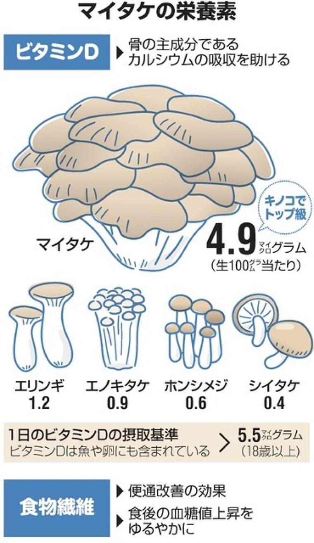 冬こそマイタケ 「まい足し」で不足しがちな栄養補って:朝日新聞デジタル