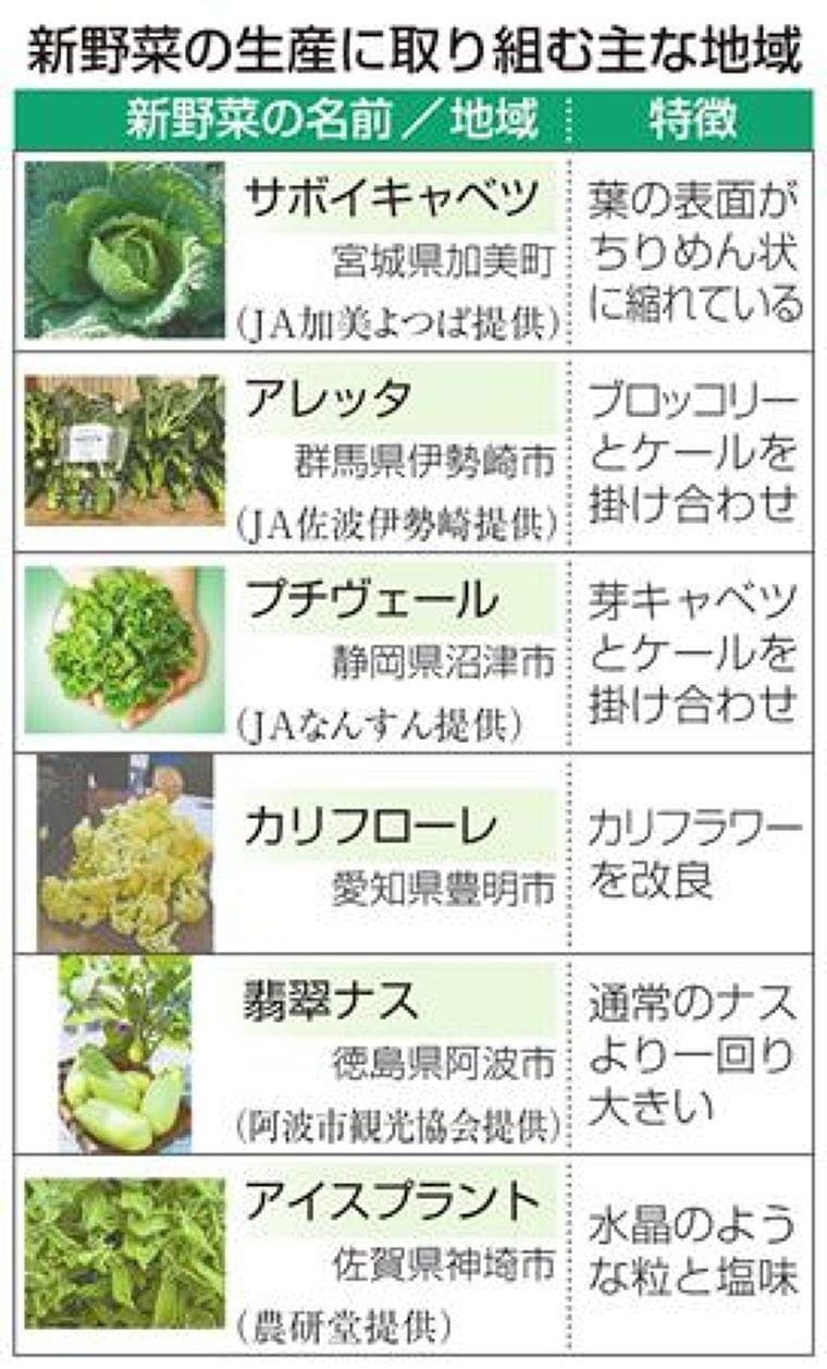 新野菜、地域で栽培活発 珍しさや栄養価PR、特産に期待  (1/2ページ) - SankeiBiz(サンケイビズ)