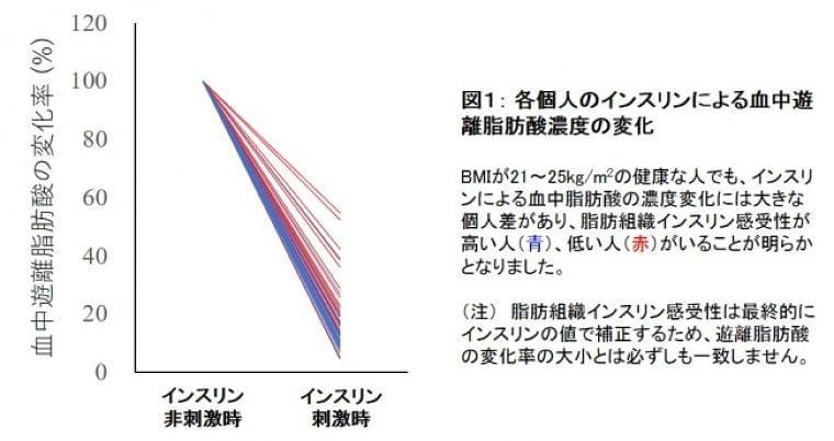 健康で正常体重の日本人男性でも脂肪組織に障害:時事ドットコム