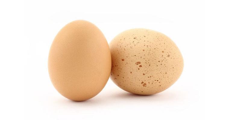 卵1日1個はウソ?  コレステロールの真実 ヘルスUP NIKKEI STYLE