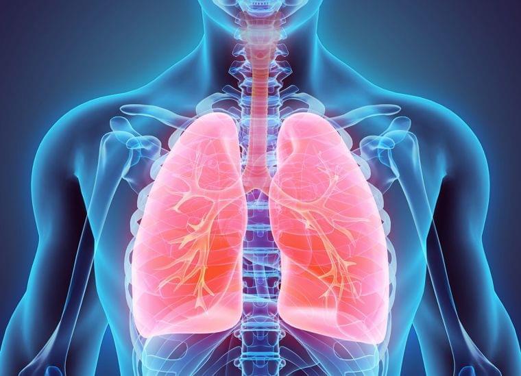 肺炎の原因となる加湿器の間違った使い方 | プレジデントオンライン