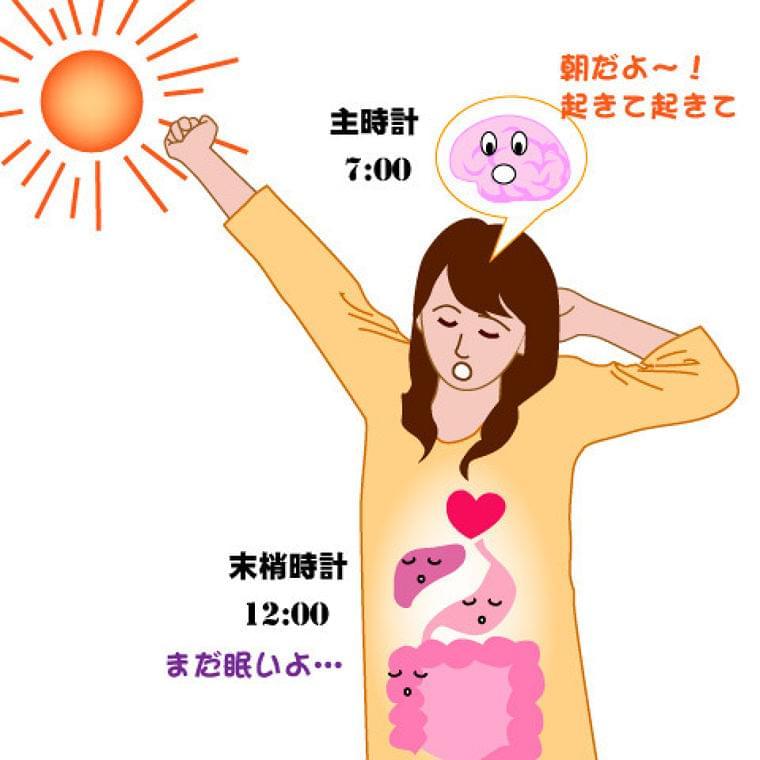 朝食抜くと「時差ボケ」に=原因は体内時計の乱れ(時事通信) - Yahoo!ニュース