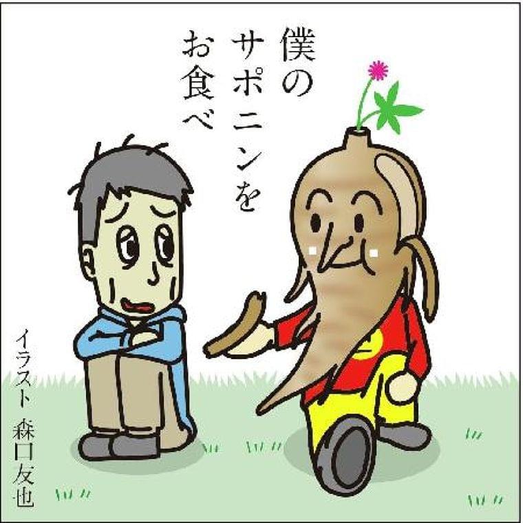 【痛み学入門講座】多彩な薬理効果「紅参」 - SankeiBiz(サンケイビズ)