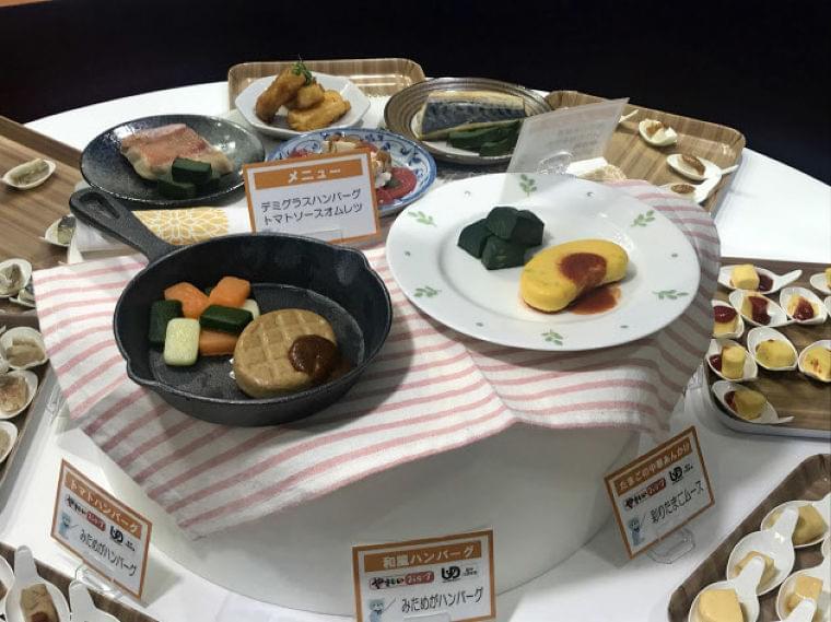 高齢者向け介護食に彩り 食品各社、在宅用普及に動く  :日本経済新聞