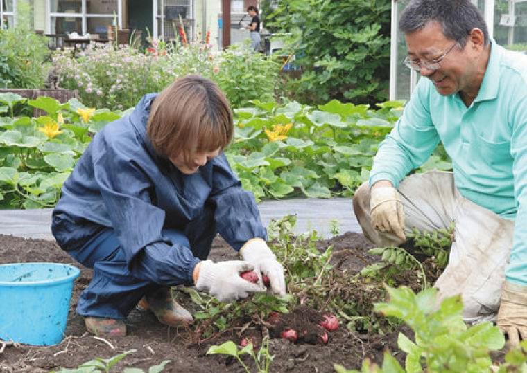東京新聞:野菜育てる大変さ学ぶ 鶴ケ島で女子栄養大が収穫祭:埼玉(TOKYO Web)