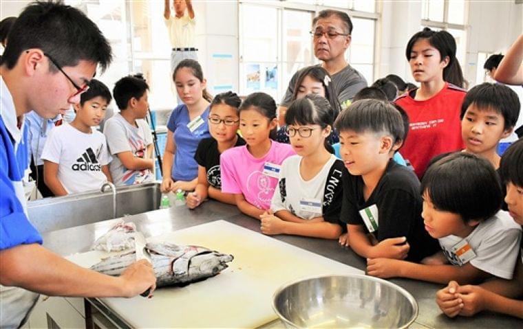 魚文化に親しむ 焼津、児童が調理体験|静岡新聞アットエス