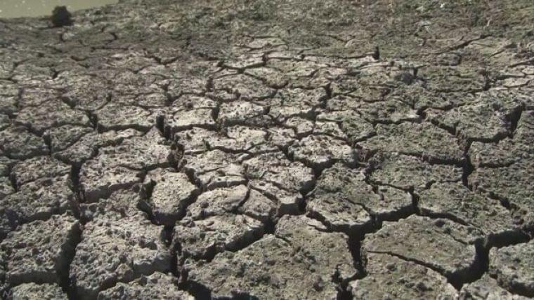 「温暖化で子どもの健康リスク拡大」研究者グループ | NHKニュース