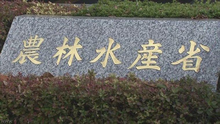 給食やイベント中止で未使用の食品寄付へ 農水省が仲介   NHKニュース