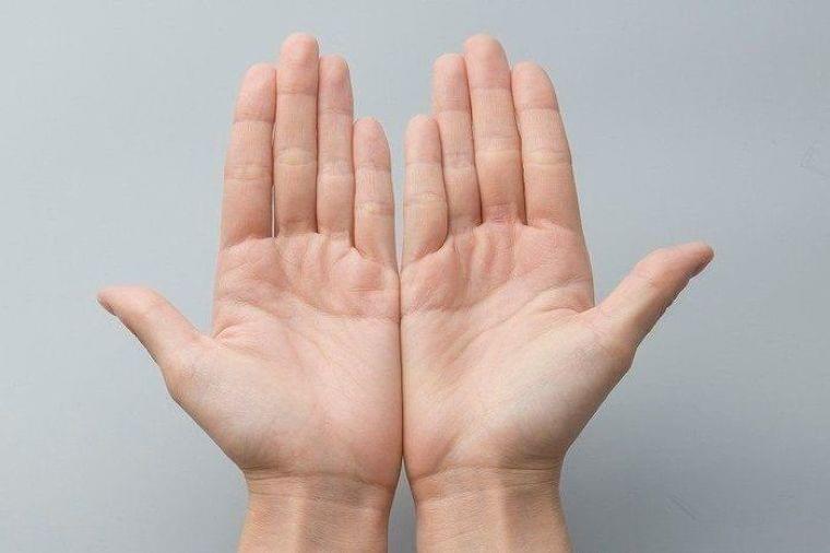 妊婦さんの栄養、1日分の必要量が食材を持つ「手ばかり」でわかる方法(たまひよONLINE) - Yahoo!ニュース