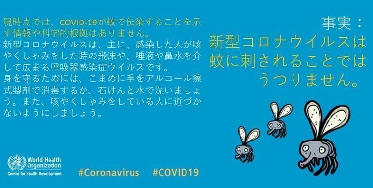 新型コロナ、蚊を介して感染せず…WHO・厚労省(リセマム) - Yahoo!ニュース