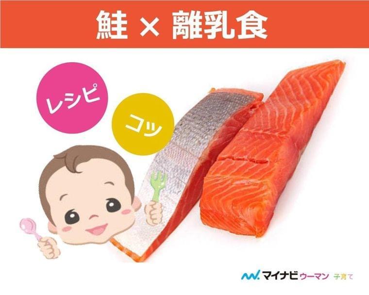 離乳食の鮭はいつから?中期・後期・完了期レシピ【管理栄養士監修】 | マイナビウーマン子育て