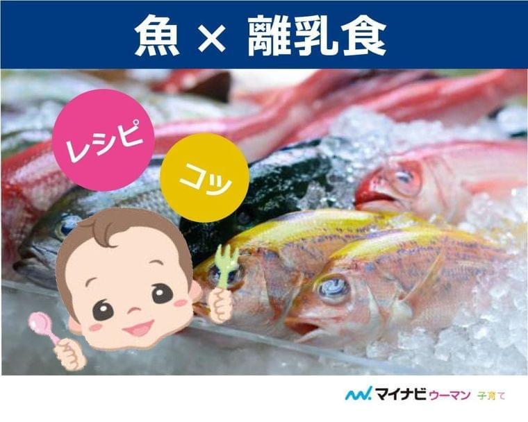 離乳食の魚はいつから?初期・中期・後期レシピ【管理栄養士監修】   マイナビウーマン子育て