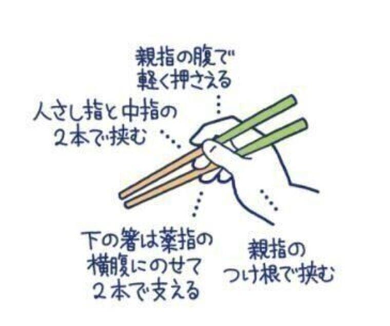 子ども用箸は何歳から使う? 選び方は? スプーンやフォークが使えたらすこしずつ【管理栄養士】(たまひよONLINE) - Yahoo!ニュース