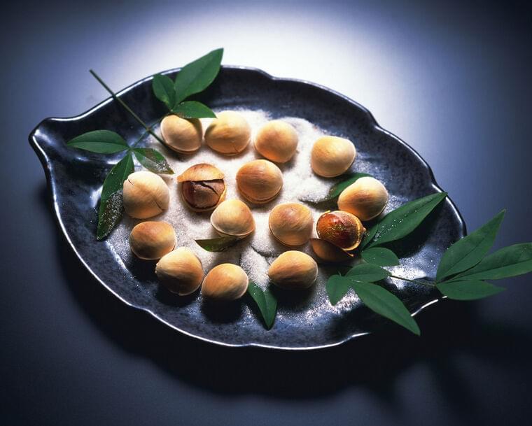 銀杏の栄養素・効能…銀杏中毒にならない適量は何個まで? [食と健康] All About