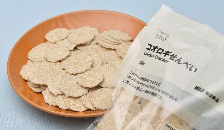 <環境視点>昆虫食、世界が注目 人口増対応 タンパク源:東京新聞 TOKYO Web