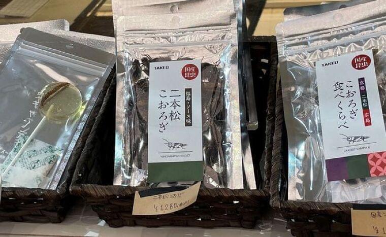 「こおろぎ食べくらべ」「タガメサイダー」「サゴワームとオオスズメバチ幼虫のバターソテー」など集結、東京駅地下「虫グルメフェスVol.0」に多彩な客層|食品産業新聞社ニュースWEB