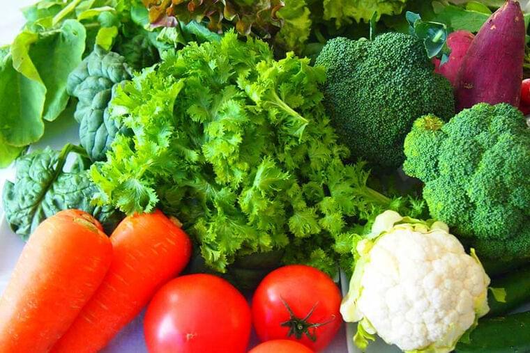今、世界のアスリートに広がる植物性食品 栄養面から考えるメリット&デメリットとは   THE ANSWER スポーツ文化・育成&総合ニュースサイト