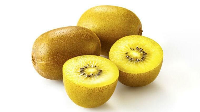 黄色のキウイフルーツがアスリートの抗酸化能を高める可能性 女子栄養大