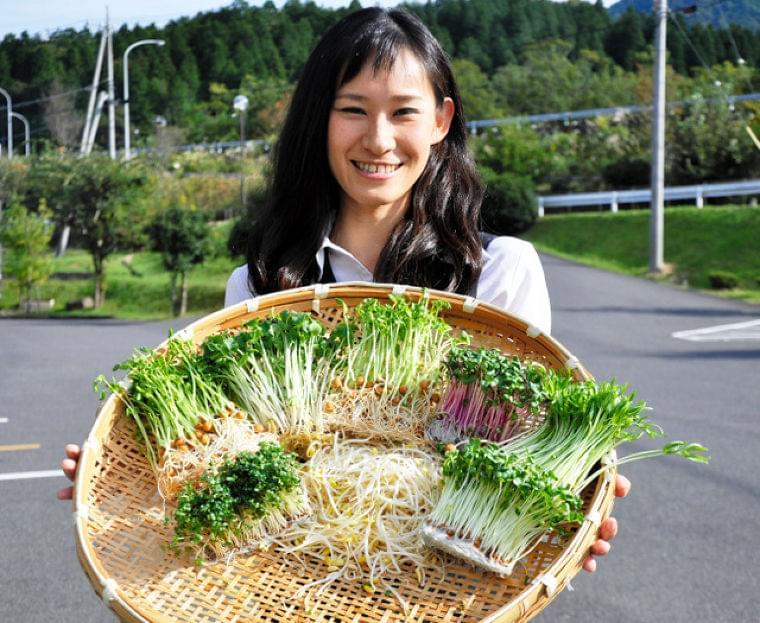 スプラウト、野菜高騰で脚光 栄養価高く価格も手ごろ:朝日新聞デジタル