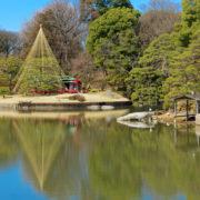 不用品回収を行う文京区の風景