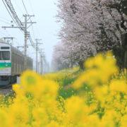 生前整理を行う熊谷市の風景