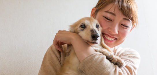 ペットの介護をする女性