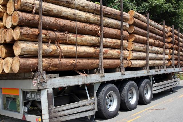 伐採した木の処分費用