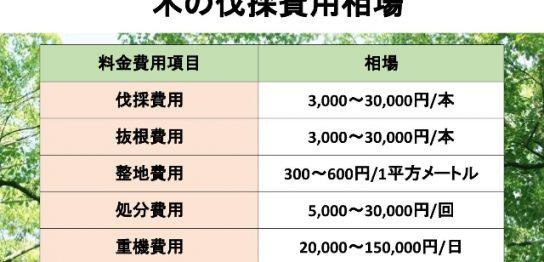 木の伐採費用の相場表