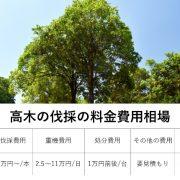 高木の伐採の料金費用相場の図