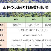 山林伐採の費用料金相場の図