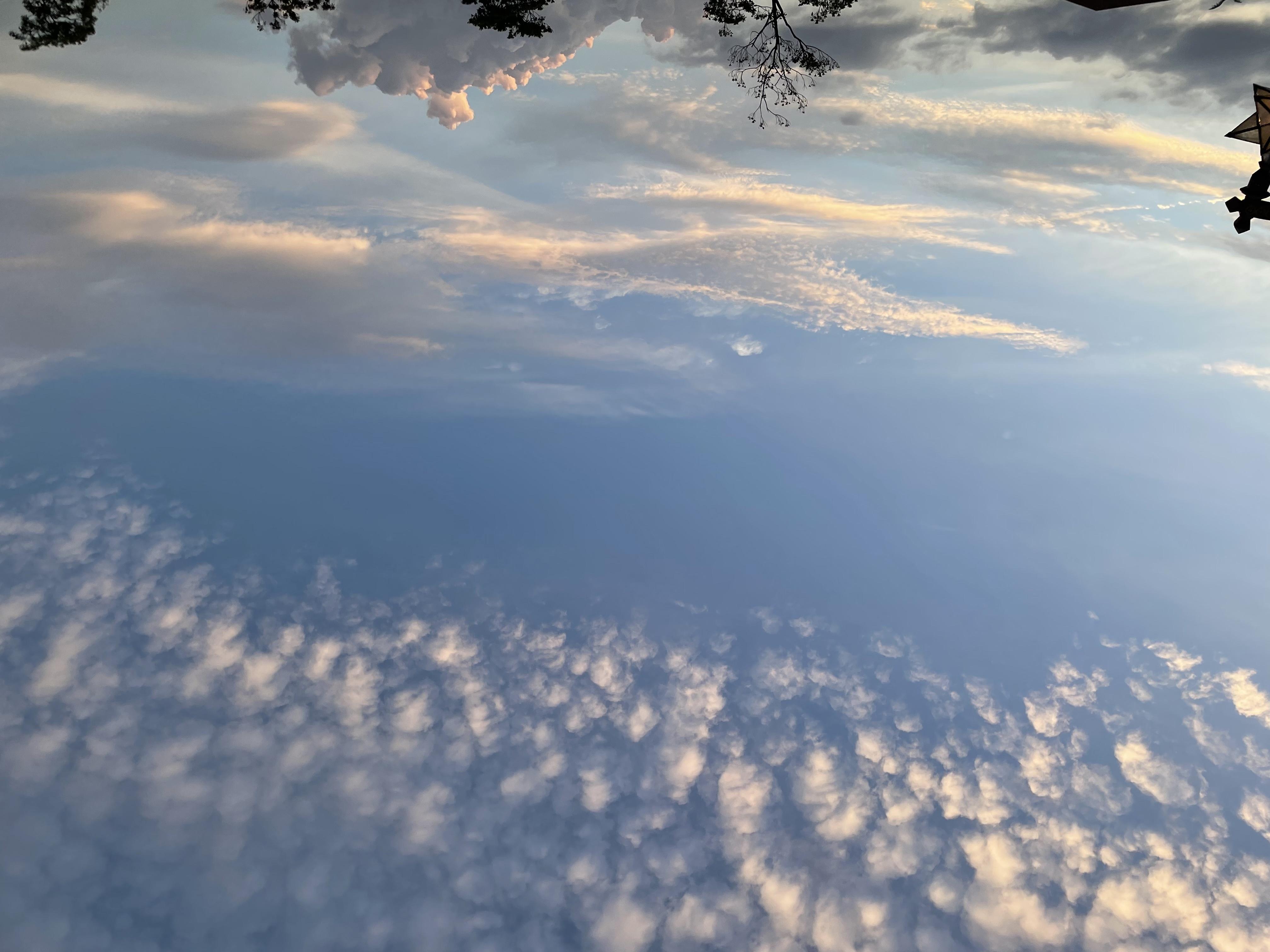 ハシバ カレン 3メイン画像