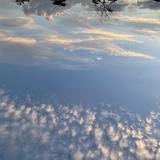 ハシバ カレン 3前のブログ