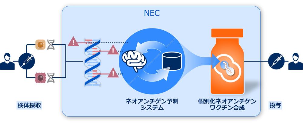 NEC、最新AIを活用した創薬事業に本格参入。2025年に事業価値3000億円を目指す