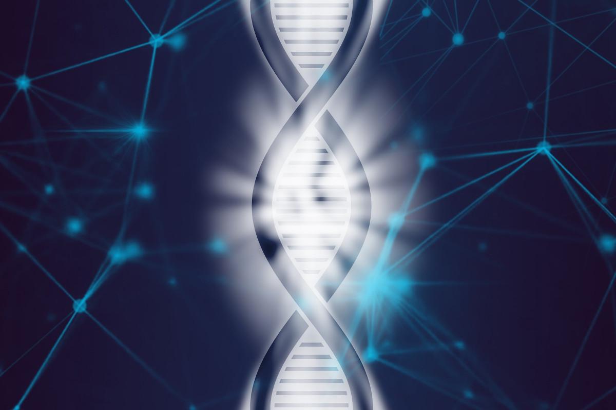 コニカミノルタ|東大、国立がん研究センター研究所と共同で、がん遺伝子パネルに関する共同研究を開始