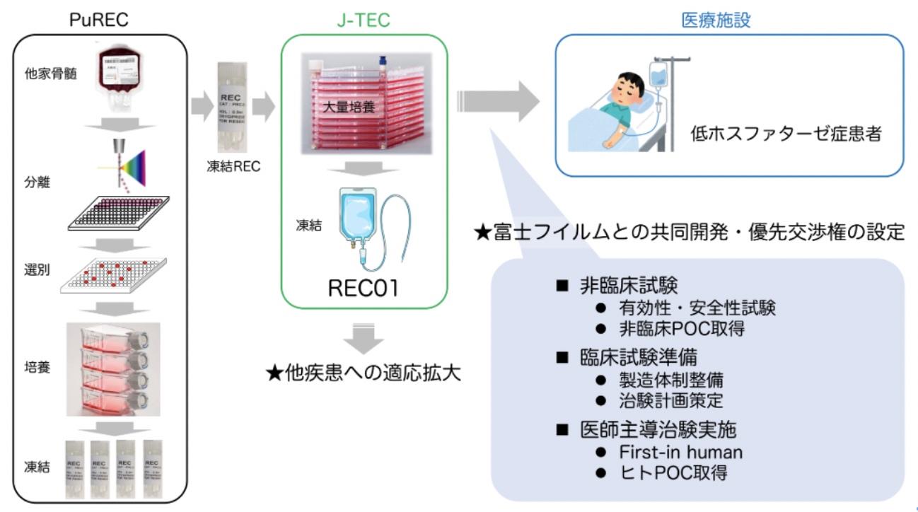 富士フイルム、島根大発の再生医療ベンチャー・PuRECへ出資