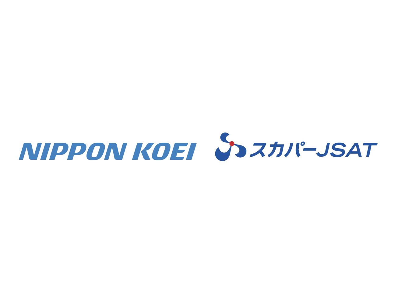 日本工営×スカパーJSAT|衛星データを活用し、防災・減災業務効率化サービスを共同開発