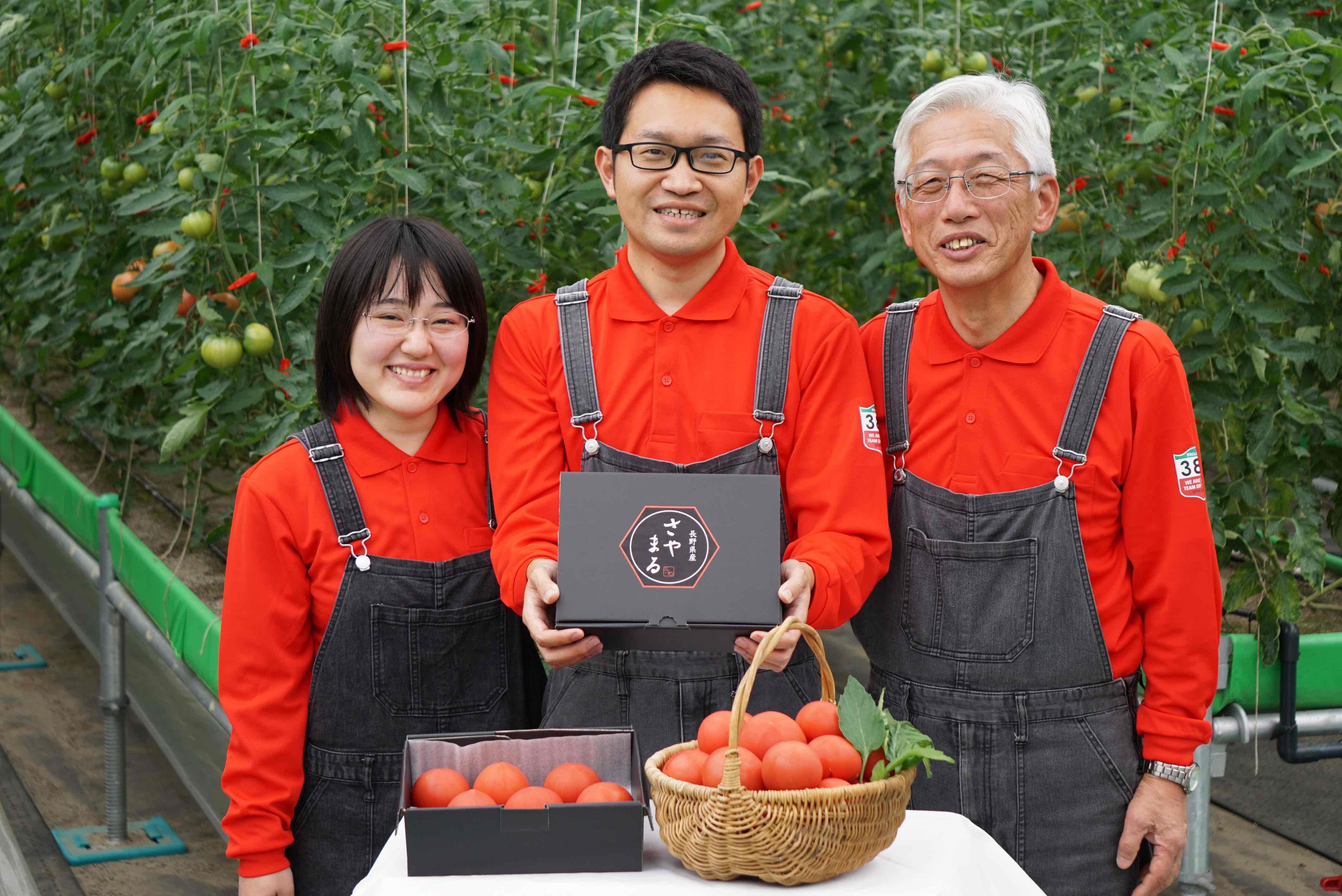 日本郵便の新規事業は「トマト」!?――ゼロからトマト栽培に挑むイントレプレナーの奮闘に迫る|eiiconlab 事業を活性化するメディア