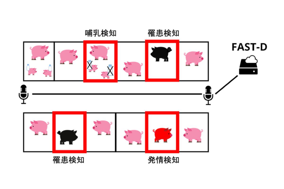 Hmcomm×三菱ケミカル×宮崎大学|共同で異音検知技術による「豚の音声検知システム」の開発を目指す