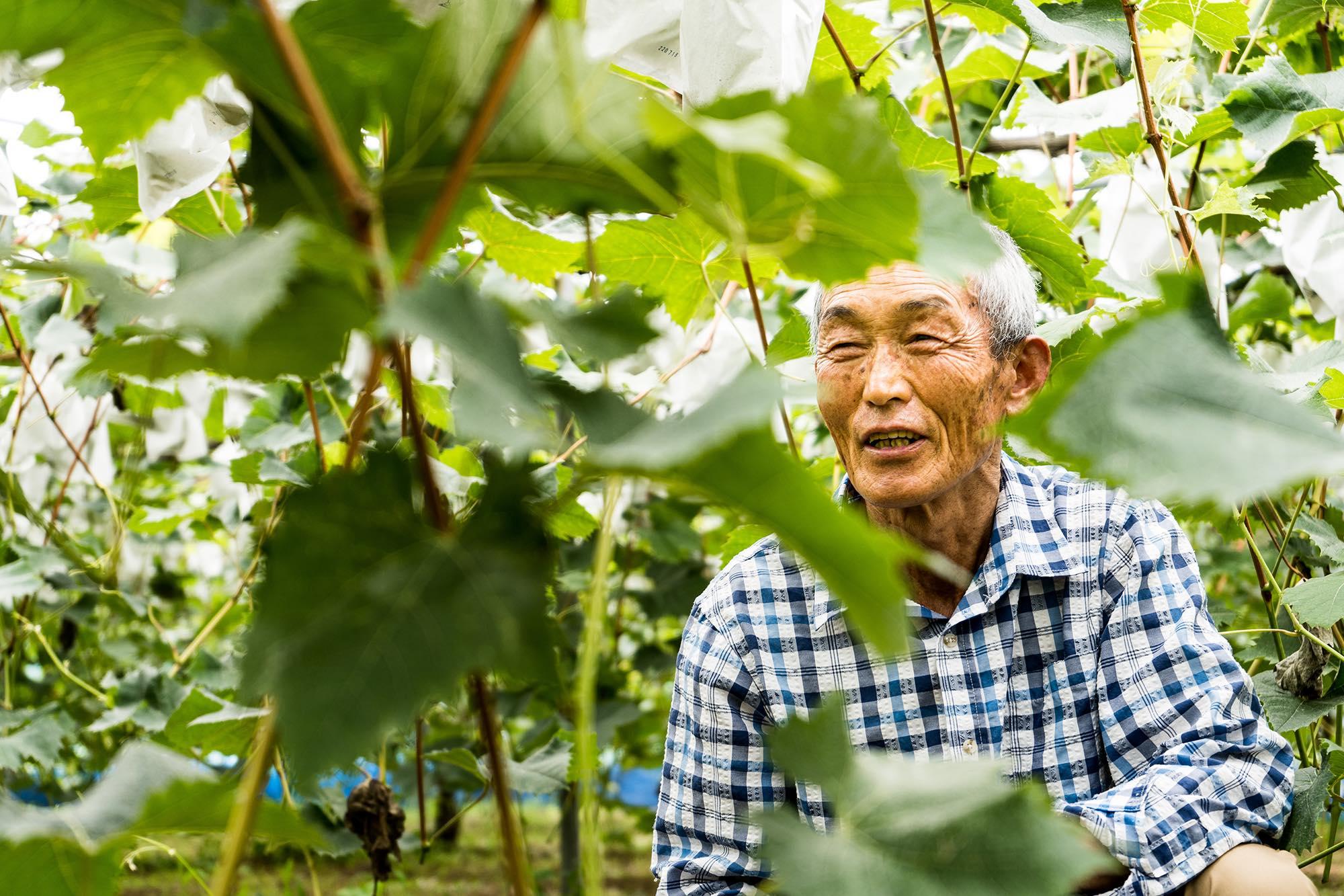 宮崎県の地域商社がガイアックス「スタートアップスタジオ」発の農業人材マッチング事業と提携