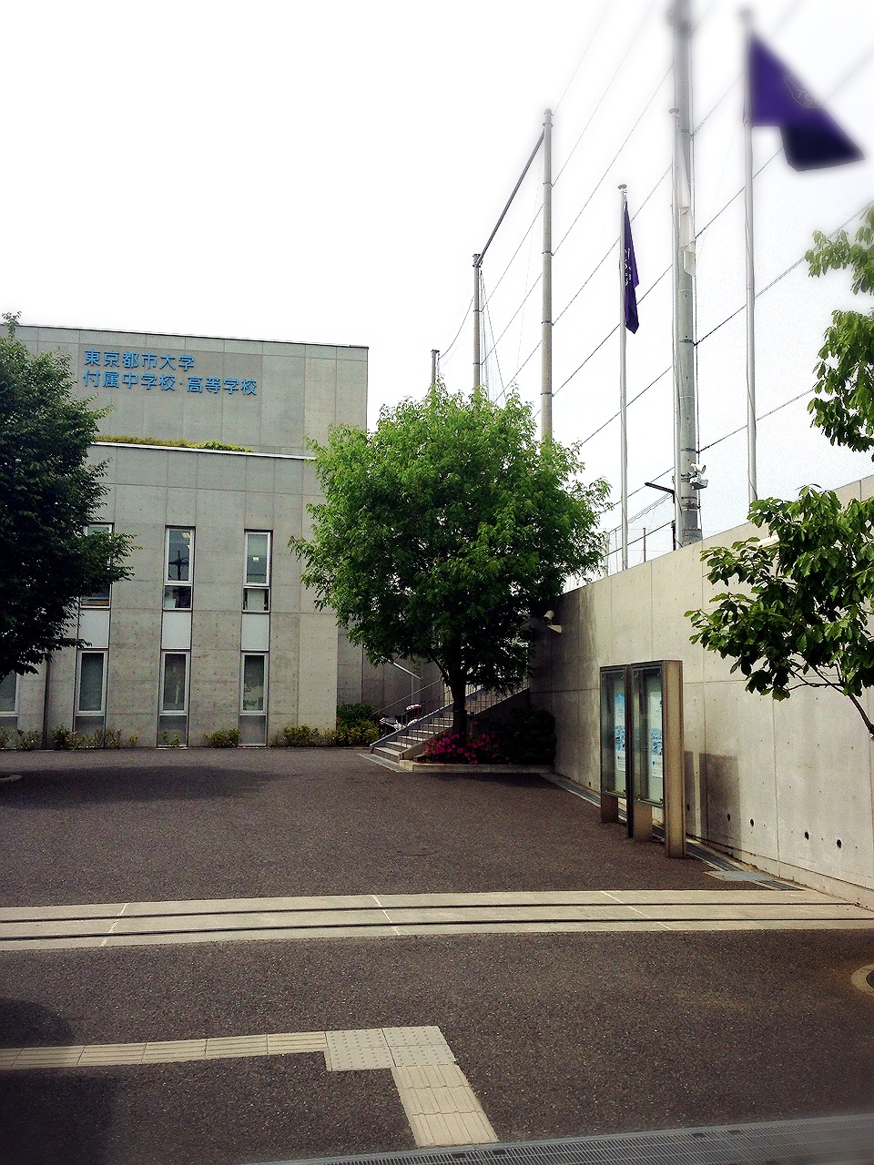 都市 中学校 東京 大学 付属