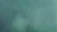 なぜ埼玉でTOPに稼げるのか!?是非動画をご覧ください! 妹系イメージSOAP萌えフードル学園 大宮本校の求人ブログ