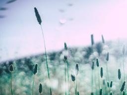 難忘放榜那天的天空 卵巢早老也有春天