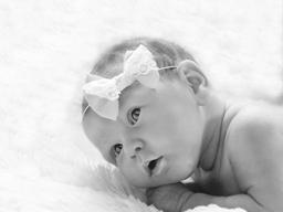 60分x 60分 早產龍鳳胎的幸福宣言