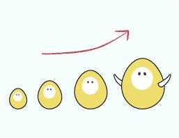 胚胎是怎麼發育長大的呢?