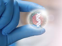 鑲嵌型胚胎可以植入嗎?看研究顯示怎麼說