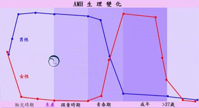 AHM 生理變化圖