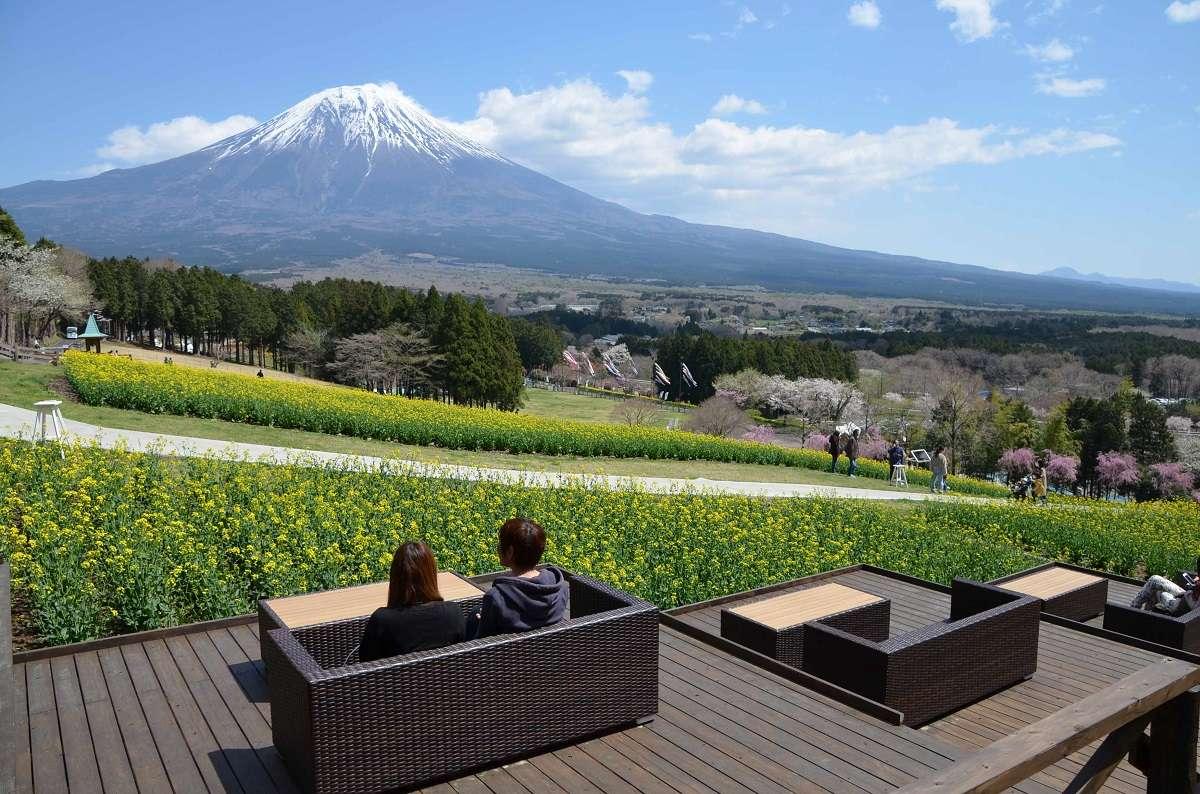 まかいの牧場、朝霧高原、富士山テラス